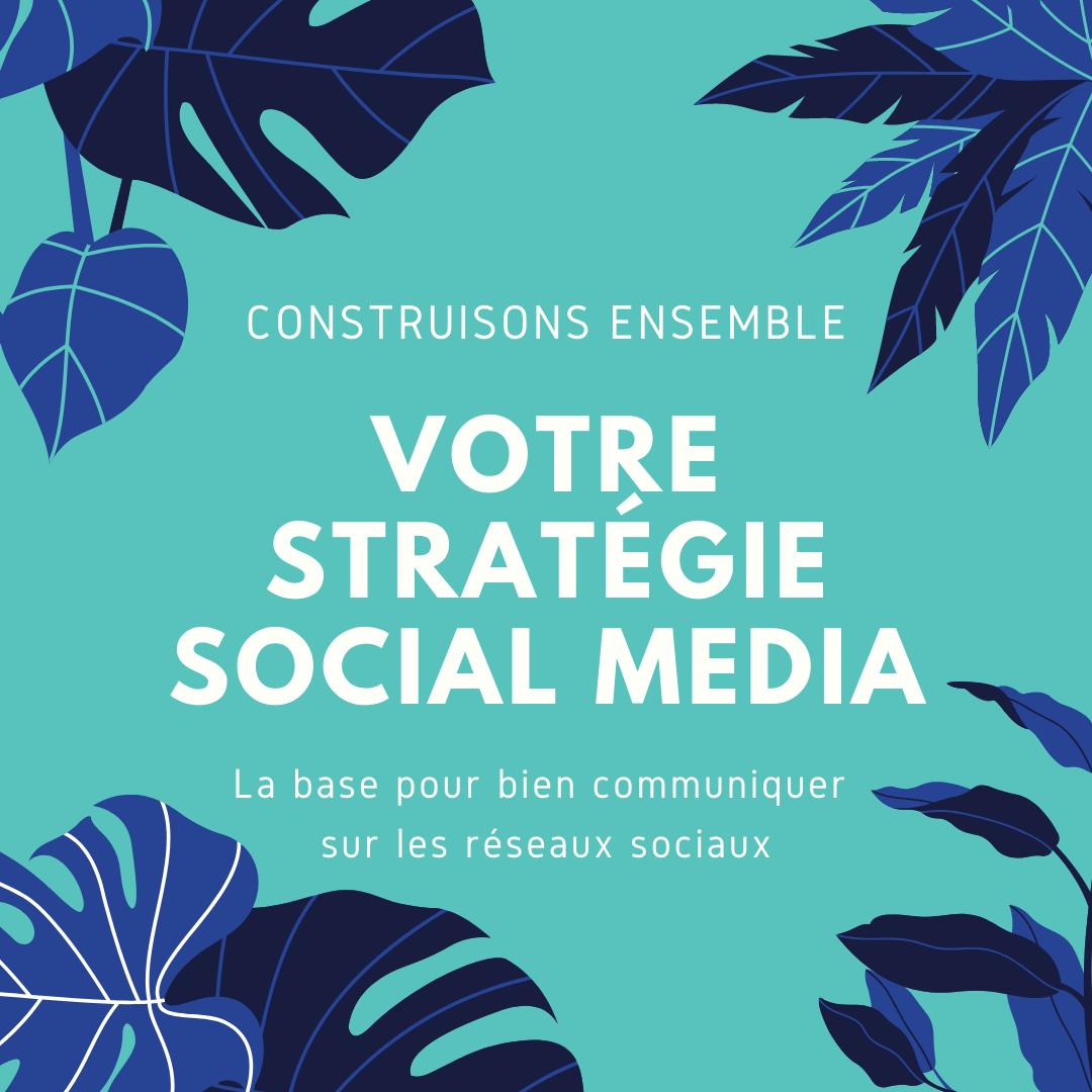 Stratégie Social Media - Elise Fauvel, Community Manager à Lille freelance